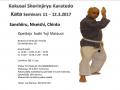 Kata Seminar 11 -12.3.2017