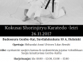 karateleiriHki261117